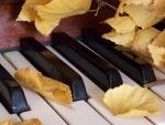 Новый Лирический минус (Осенняя тема)